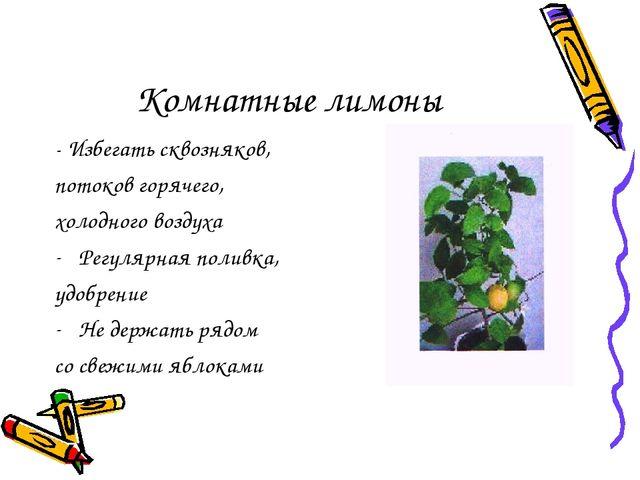 Комнатные лимоны - Избегать сквозняков, потоков горячего, холодного воздуха Р...