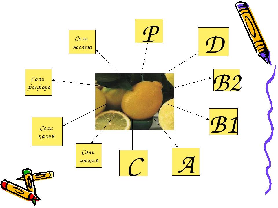 В1 А В2 С Соли магния Соли калия Соли фосфора Соли железа Р Д
