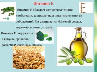 Витамин Е Витамин Е обладает антиоксидантными свойствами, защищает наш орган