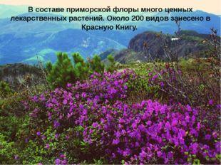В составе приморской флоры много ценных лекарственных растений. Около 200 вид