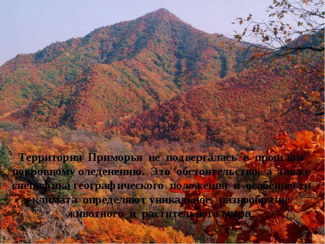 Территория Приморья не подвергалась в прошлом покровному оледенению. Это обст...