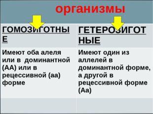 организмы ГОМОЗИГОТНЫЕГЕТЕРОЗИГОТНЫЕ Имеют оба алеля или в доминантной (АА