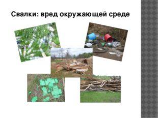 Свалки: вред окружающей среде