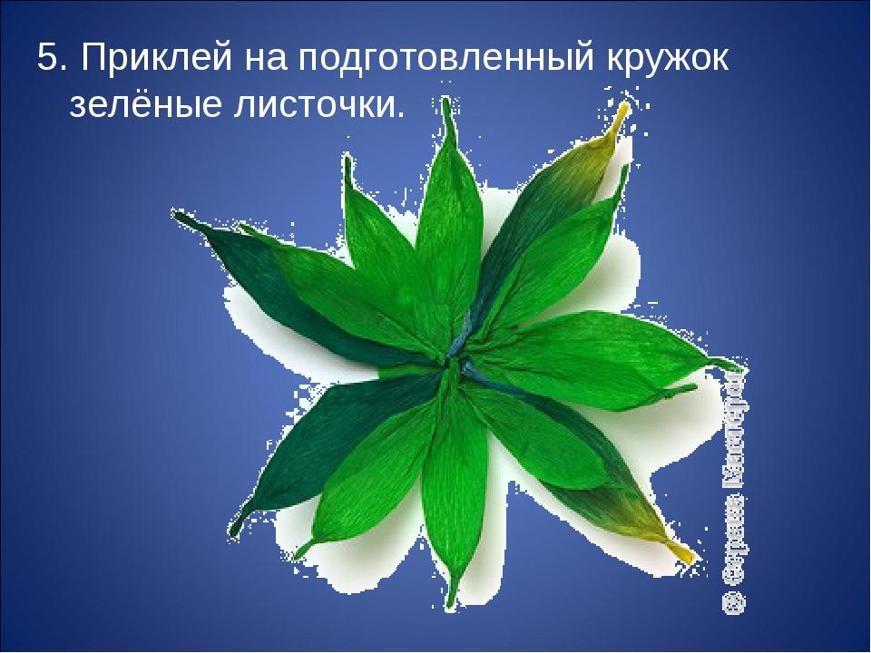5. Приклей наподготовленный кружок зелёные листочки.