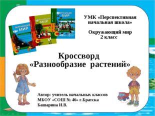 УМК «Перспективная начальная школа» Окружающий мир 2 класс Кроссворд «Разноо