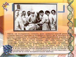 Павлов, как последователь Сеченова, много занимался нервной регуляцией. Сече