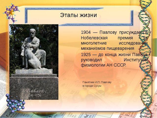 Этапы жизни 1904 — Павлову присуждается Нобелевская премия за многолетние ис...