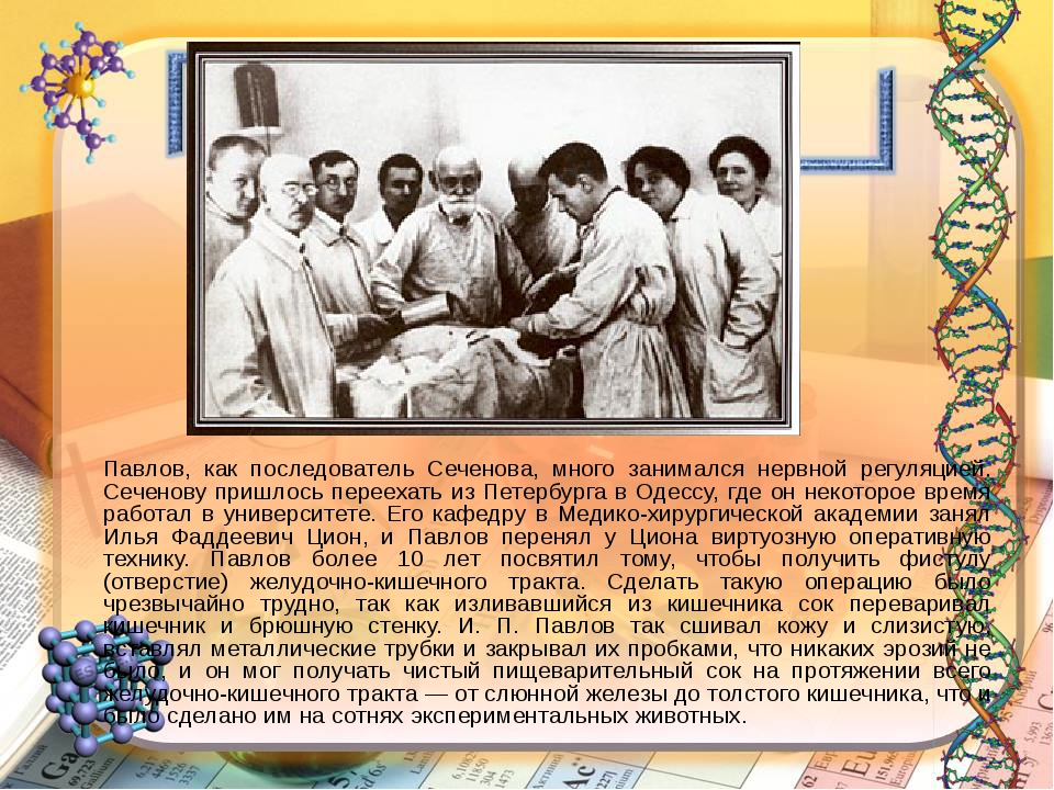 Павлов, как последователь Сеченова, много занимался нервной регуляцией. Сече...