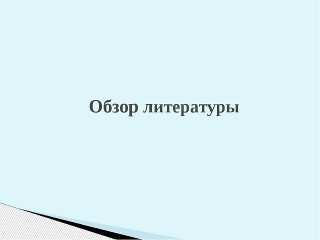 Обзор литературы С какой литературы взято