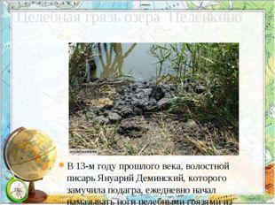 Целебная грязь озера Пеленкино В 13-м году прошлого века, волостной писарь Ян