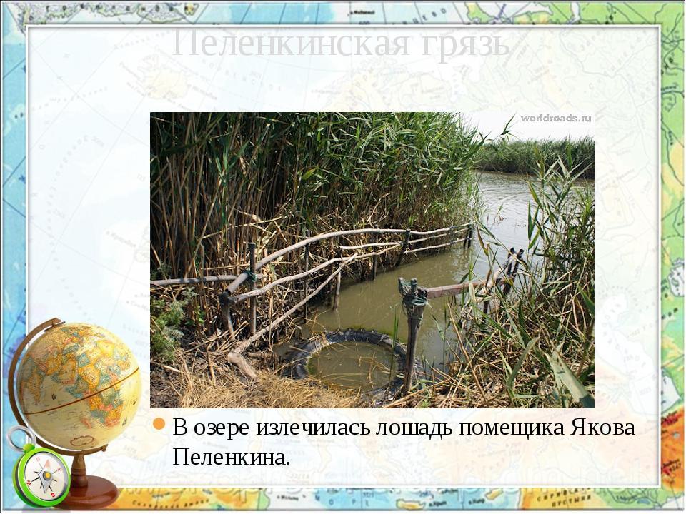 Пеленкинская грязь В озере излечилась лошадь помещика Якова Пеленкина.