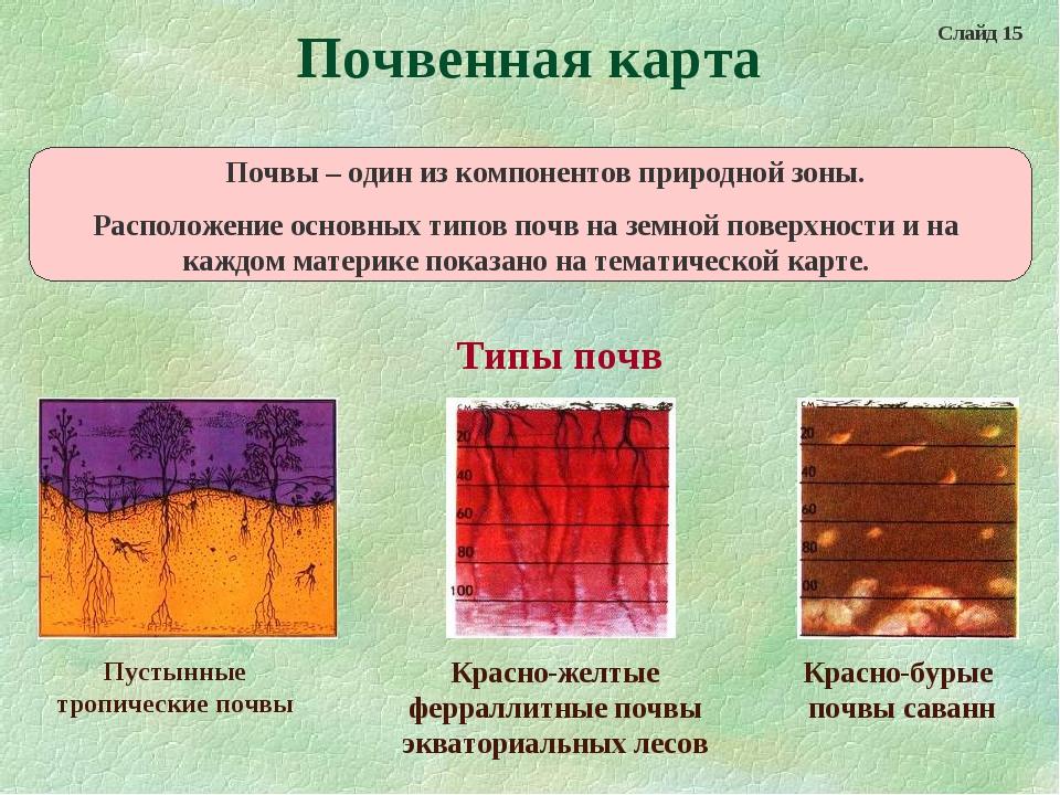 Почвенная карта Пустынные тропические почвы Красно-желтые ферраллитные почвы...