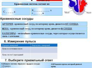 А1)Какую систему образуют сердце и сосуды: 1)Нервную 2)Пищеварительную 3)Дыха