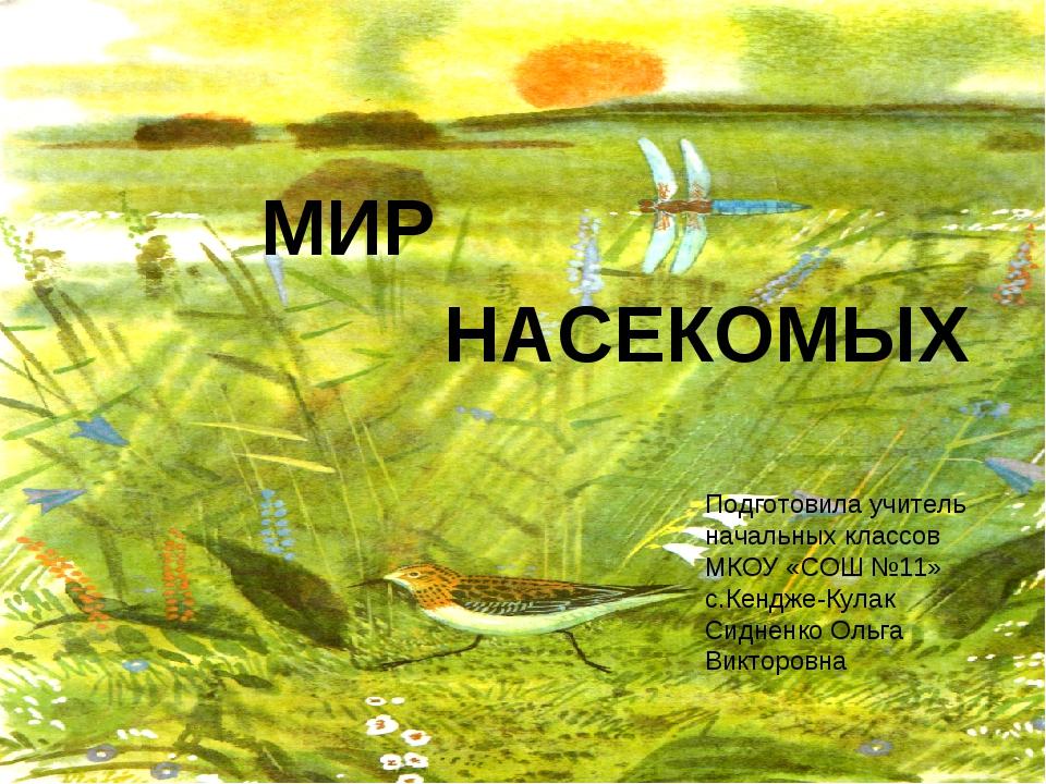 МИР НАСЕКОМЫХ Подготовила учитель начальных классов МКОУ «СОШ №11» с.Кендже-К...