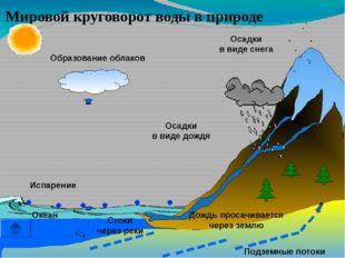 Вывод: Круговорот воды в природе – бесконечен!
