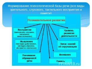 Формирование психологической базы речи (все виды зрительного, слухового, такт