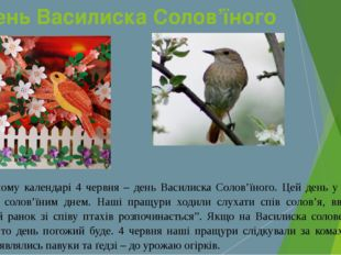 День Василиска Солов'їного У народному календарі 4 червня – день Василиска Со