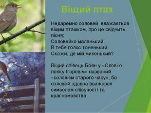 Недаремно соловей вважається віщим пташком, про це свідчить пісня: Соловейко