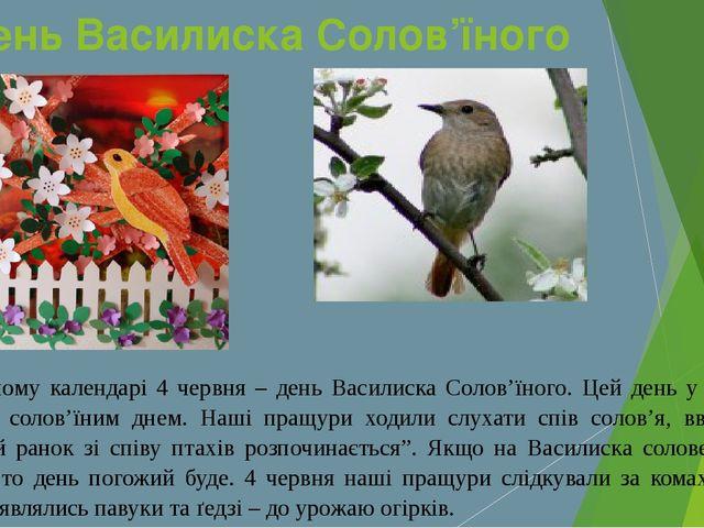 День Василиска Солов'їного У народному календарі 4 червня – день Василиска Со...