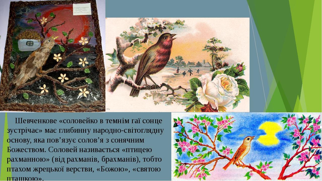 Шевченкове «соловейко в темнім гаї сонце зустрічає» має глибинну народно-сві...