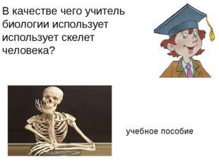 В качестве чего учитель биологии использует использует скелет человека? учебн