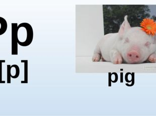 Pp [p] pig