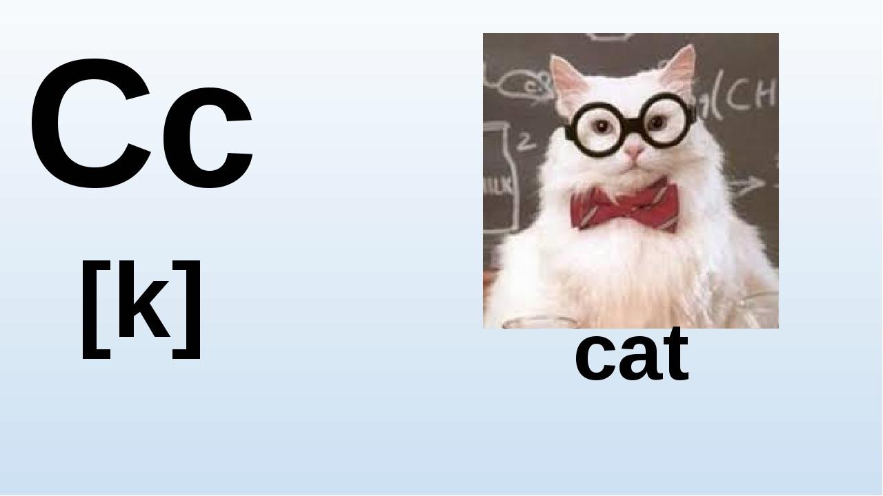 Cc [k] cat