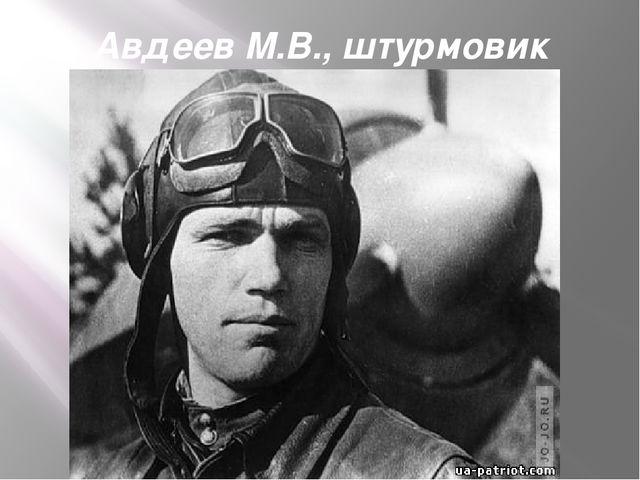 Авдеев М.В., штурмовик