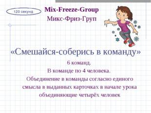 120 секунд Mix-Freeze-Group Микс-Фриз-Груп «Смешайся-соберись в команду» 6 ко