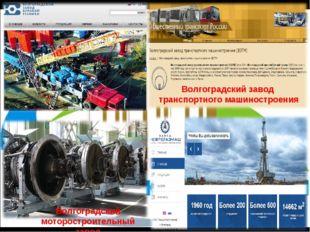 Волгоградский моторостроительный завод Волгоградский завод транспортного маши