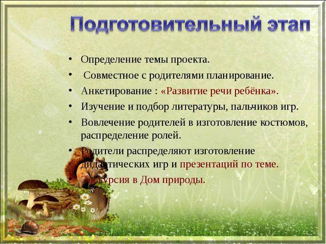 Определение темы проекта. Совместное с родителями планирование. Анкетирование...