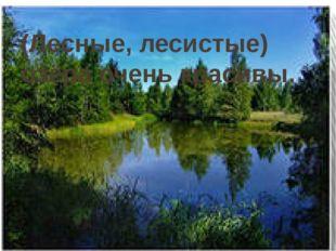 (Лесные, лесистые) озёра очень красивы.