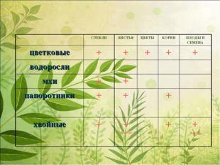 СТЕБЛИЛИСТЬЯЦВЕТЫКОРНИПЛОДЫ И СЕМЕНА цветковые+++++ водоросли