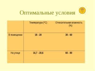 Оптимальные условия Температура (ºС)Относительная влажность (%) В помещени