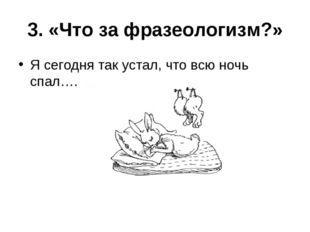 3. «Что за фразеологизм?» Я сегодня так устал, что всю ночь спал….