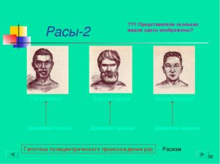 Расы-2 * Гипотеза полицентрического происхождения рас Древний предок Древний