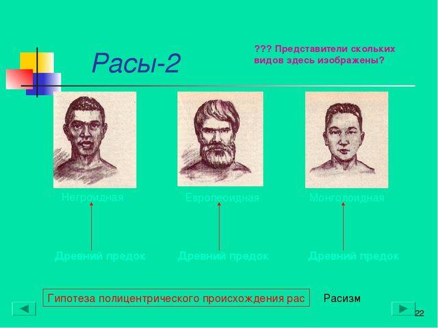 Расы-2 * Гипотеза полицентрического происхождения рас Древний предок Древний...