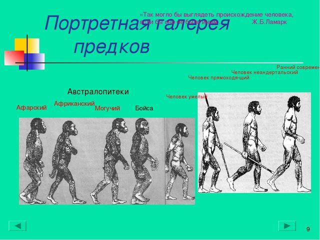 Портретная галерея предков * Австралопитеки* Афарский Африканский Могучий Бой...