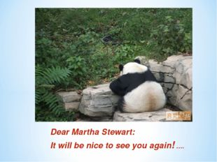 Dear Martha Stewart: It will be nice to see you again! ….