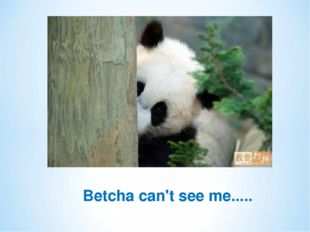 Betcha can't see me.....