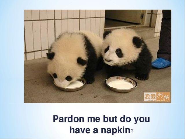 Pardon me but do you have a napkin?