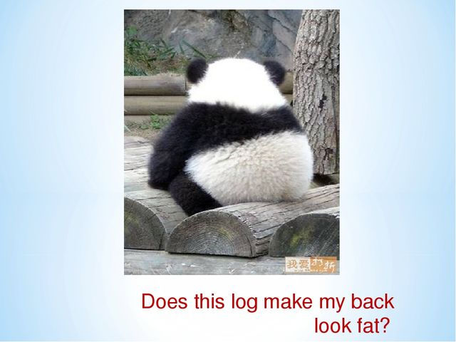 Does this log make my back look fat?