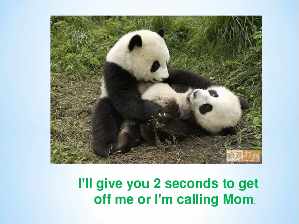 I'll give you 2 seconds to get off me or I'm calling Mom.