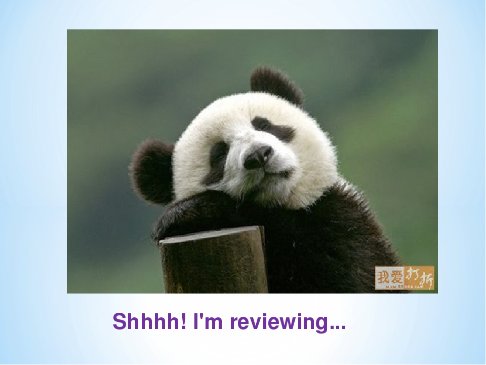 Shhhh! I'm reviewing...