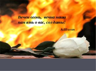 Вечен огонь, вечна наша память о вас, солдаты! А.Шилин