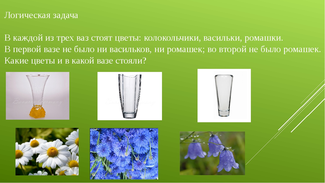 Логическая задача В каждой из трех ваз стоят цветы: колокольчики, васильки, р...