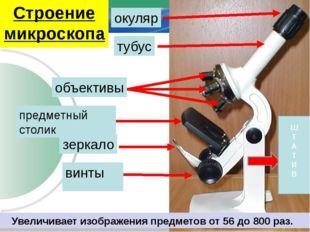 окуляр тубус объективы предметный столик винты зеркало Ш Т А Т И В Строение