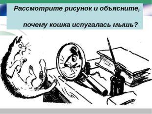 Рассмотрите рисунок и объясните, почему кошка испугалась мышь?