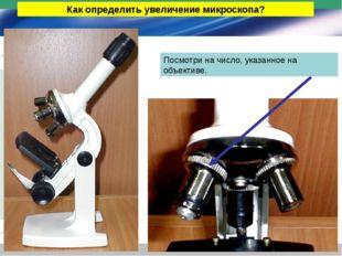 Как определить увеличение микроскопа? Посмотри на число, указанное на объекти