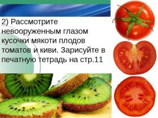 2) Рассмотрите невооруженным глазом кусочки мякоти плодов томатов и киви. За